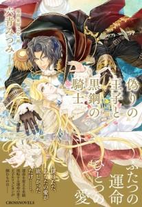 偽りの王子と黒鋼の騎士